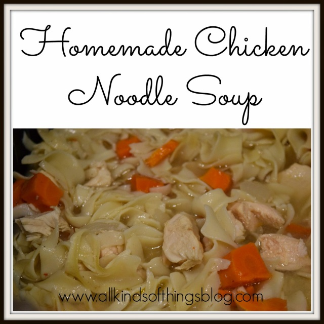 homemadechickennoodlesoup (1)